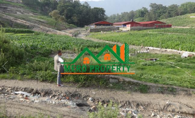 Land for sale in Phutung