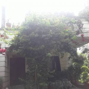 House On Rent At Hattiban