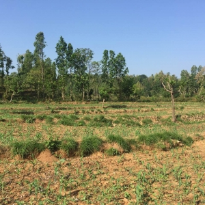 Land for sale at Hetauda