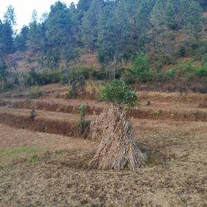 Land for sale at Lele, Near Manakamana Temple, Lalitpur