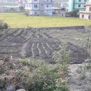 Land on Sale Tarkeshwor Sangla